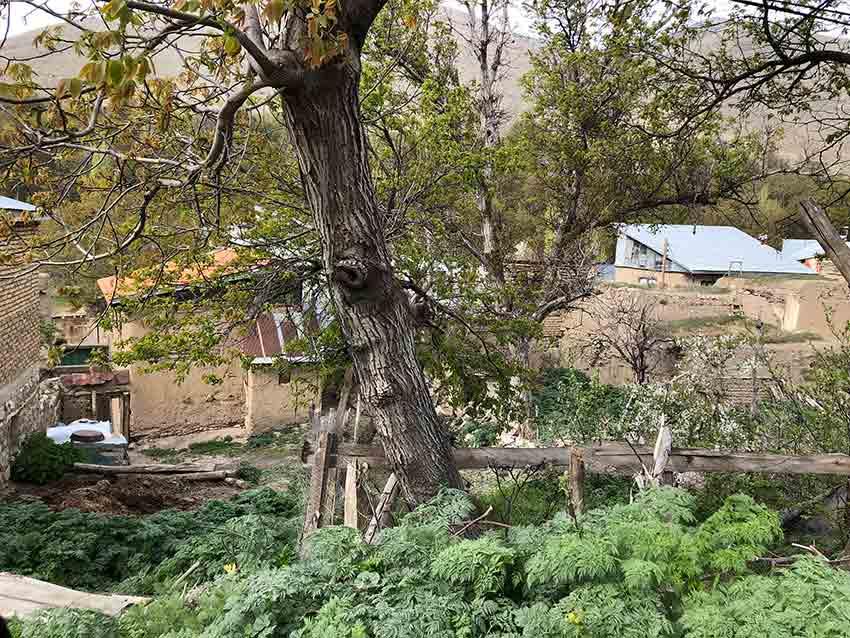 خانههای متروک گیلوان
